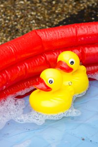 Hook The Duck 2016